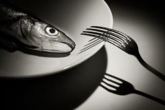 De laatste vis