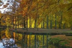 Herfst-Groeneveld